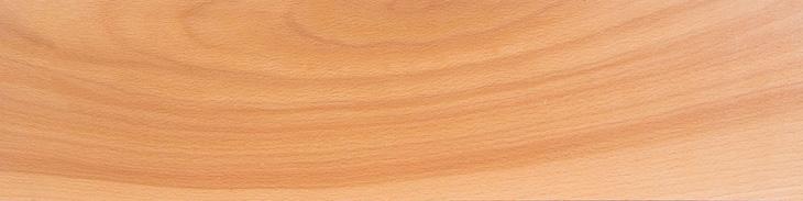 چوب راش از چوب های سخت مجله نوین چوب