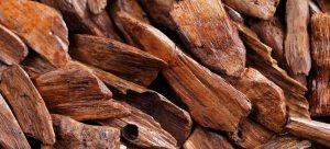 گران ترین چوبهای جهان کدامند؟ مجله نوین چوب